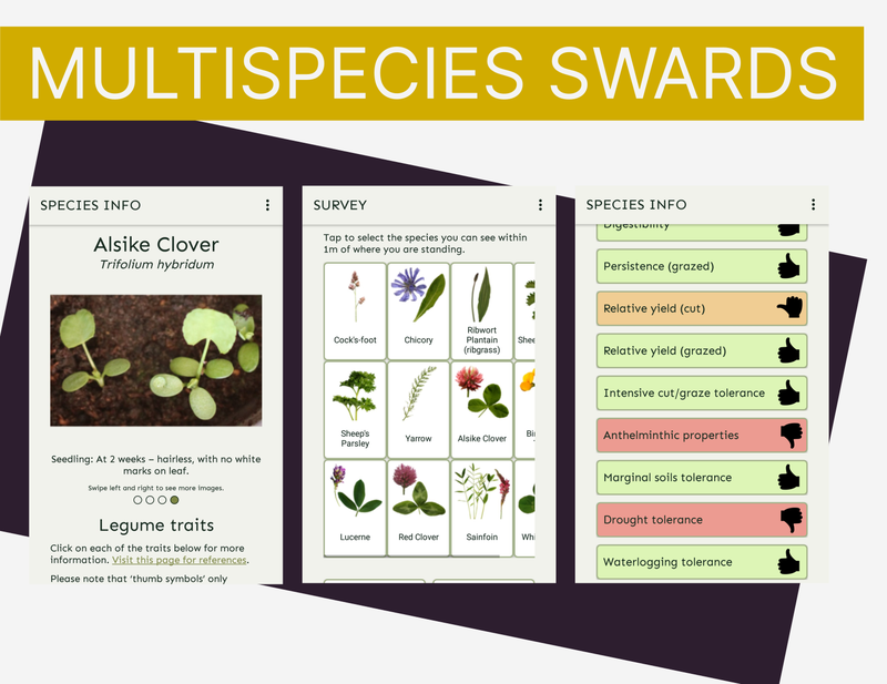 Three screenshots of a phone app, one showing Alsike clover photo, another showing lots of different species laid out as buttons, and another showing a list of species traits with thumbs up, down or neutral and different colours depending on how well the species does at each trait.