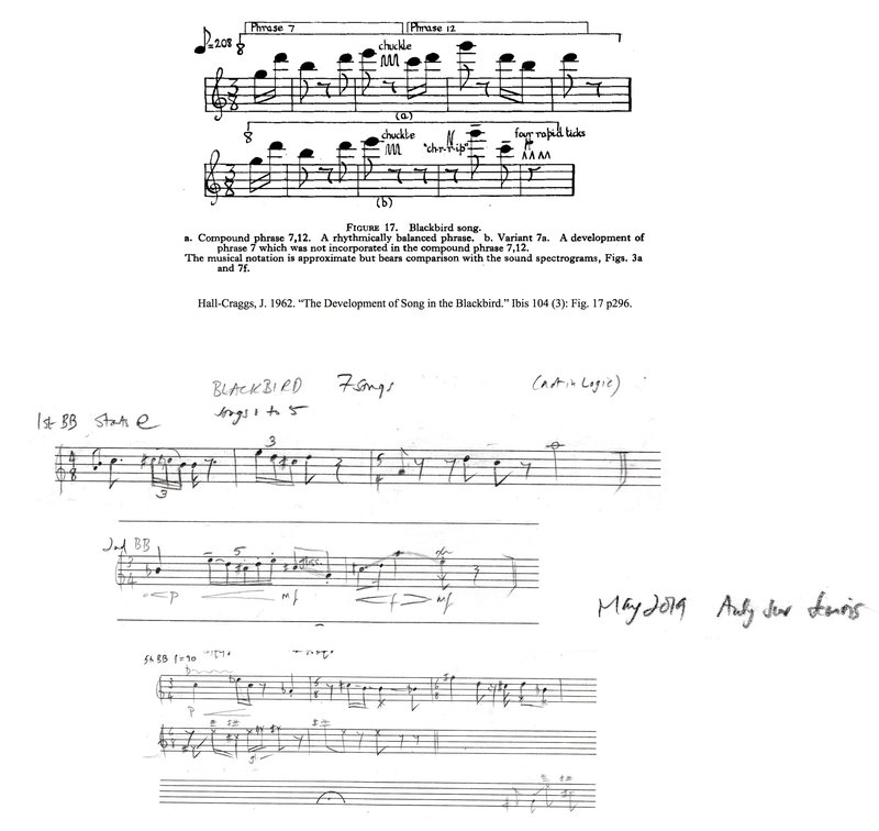 5_Music notation_Hall-Craggs's_Blackbird song_Wishart's_Blackbird song.jpg